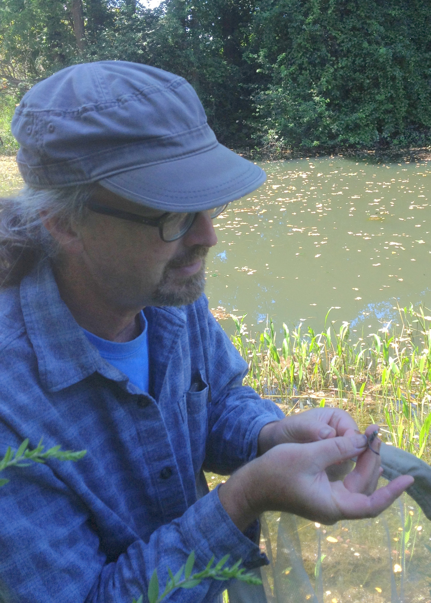 Tim practicing entomology