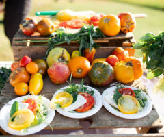 BBQ Ideas for Your Outdoorsy Events